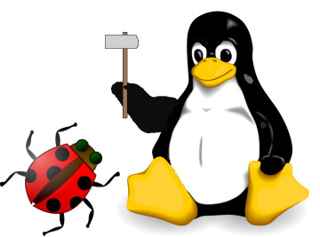 Linux crash bugs