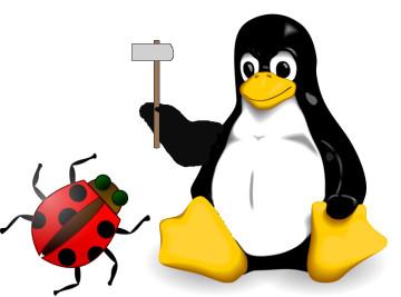 Linux crash bugs