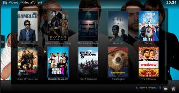KMediaTorrent interface